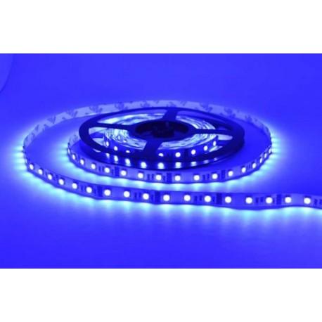 Светодиодная лента Verso FLT 1B (голубой) SMD 3528 60leds/m IP33