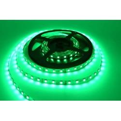 Светодиодная лента Verso FLT 1G (зеленый) SMD 3528 60leds/m IP33